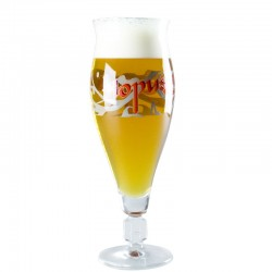 Hopus 33cl Beer glass - Glass Tulip