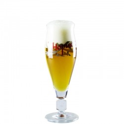 Hopus 25 cl Beer glass - Glass Tulip