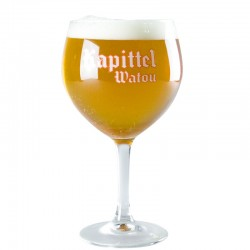 Kapittel 50cl Beer glass - Glass Ball