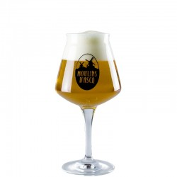 Beer glass Moulin D'Ascq 25 cl